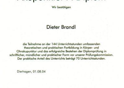 Akupunktur-A-Diplom